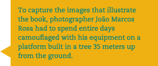 To capture the images that illustrate the book, photographer João Marcos Rosa had to spend entire days camouflaged with his equipment on a platform built in a tree 35 meters up from the ground.