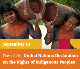 Photo of two Indians holding a tree stump with the text September 13: UN Declaration on the Rights of Indigenous Peoples Day