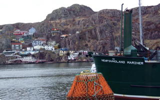 A green boat is docked in the St. John's harbour
