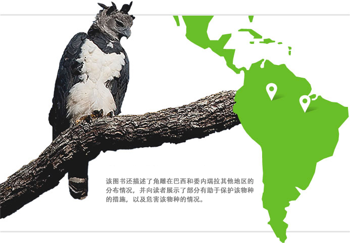 The book also depicts the harpy eagle's presence in other parts of Brazil and Venezuela, and shows readers how some human activities can help protect the species, while others jeopardize it