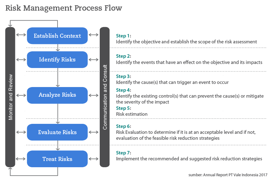 PT Vale Risk Management Process Flow