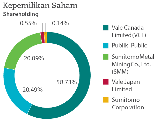 PT Vale's Distribution of shares graphic