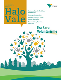 cover Halo Vale #11