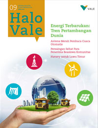 cover Halo Vale 9#