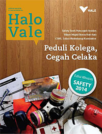 cover Halo Vale #10